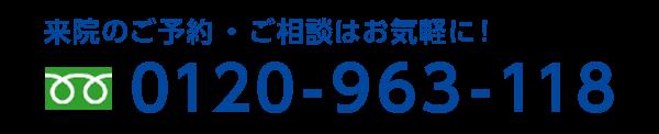 0120-963-118